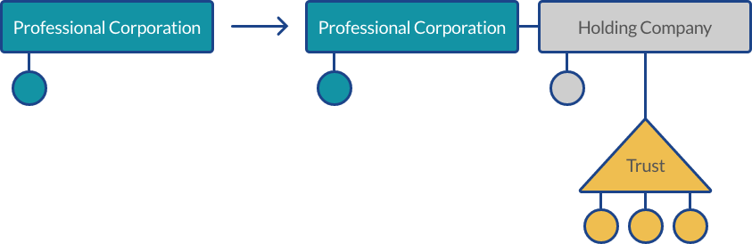 Flow chart explaining the process of creating a professional corporation.